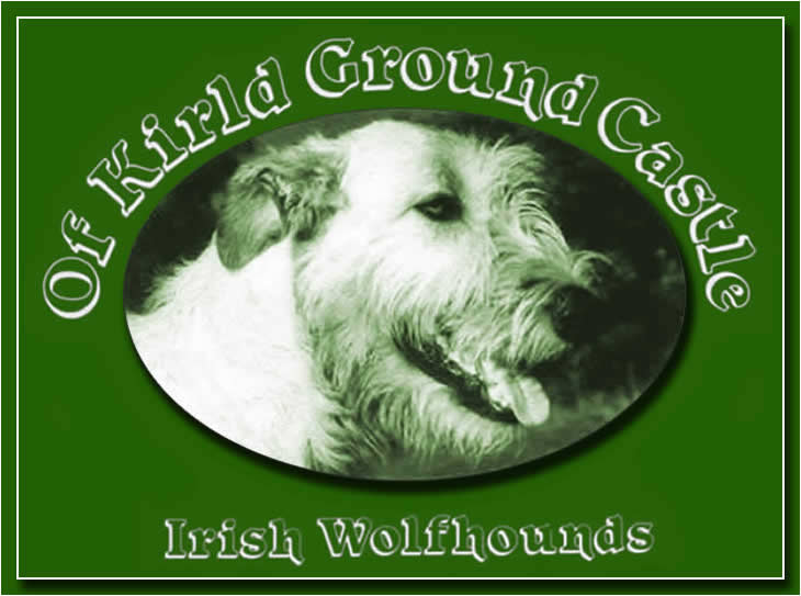 Kirld Ground Castle Irish Wolfhounds
